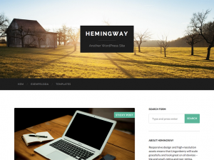 hemigway_screenshot